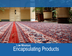 Encapsulating Products (Low Moisture)